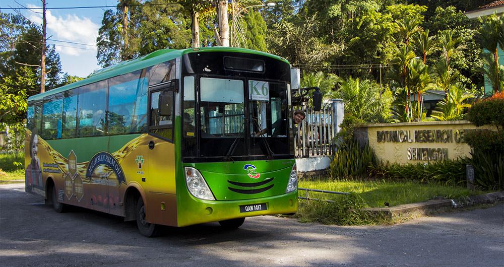 Bus-K6-Kuching-Semenggoh-Orang-Utan-Wildlife-Centre