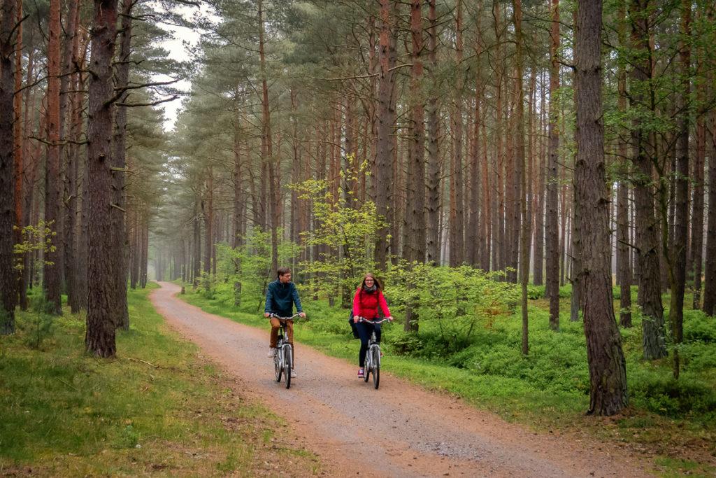 Radtour durch den Kiefernwald bei Trassenheide