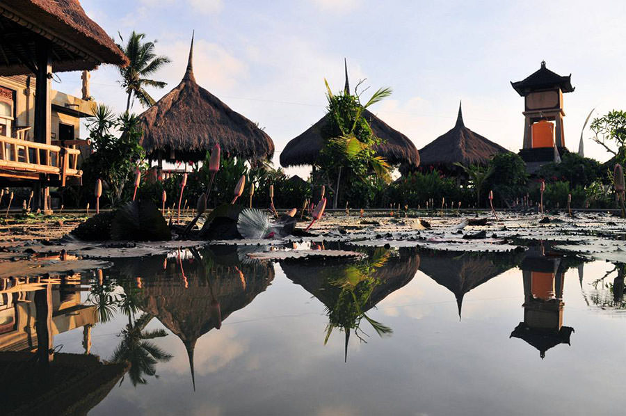 Traditional straw bungalows reflecting in a pond in the middle of rice fields, Ubud, Bali, Indonesia