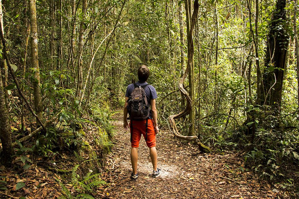 Kinabalu-Nationalpark-Wanderung-Sabah-Malaysia