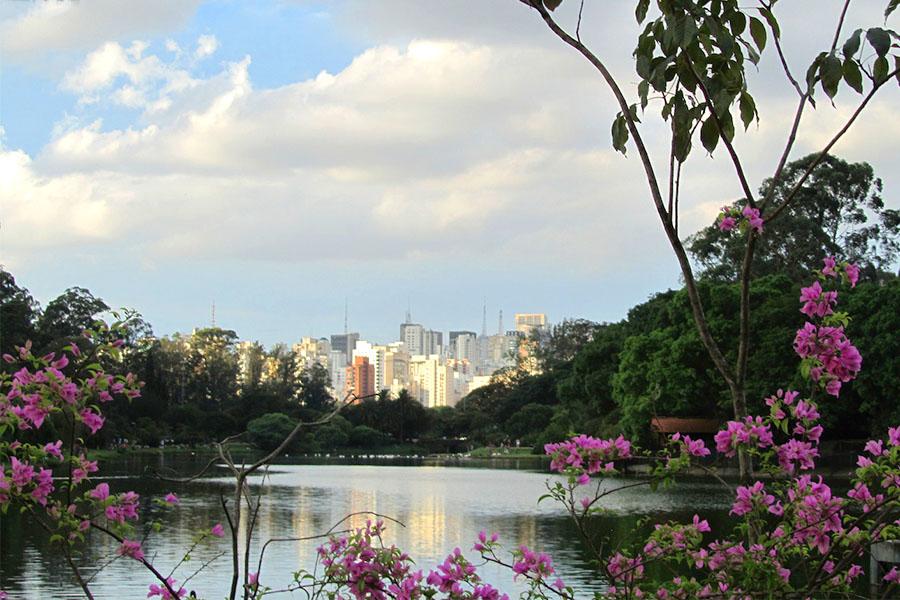 Die Stadt-Kulisse von Sao Paulo