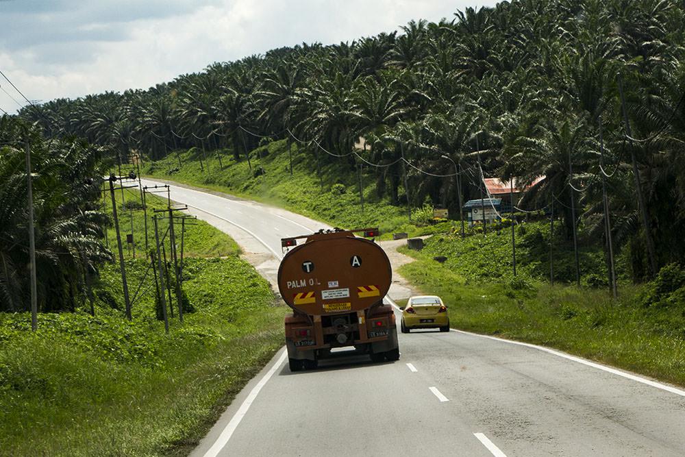 Palmoel-Plantagen-LKW-Borneo-Malaysia