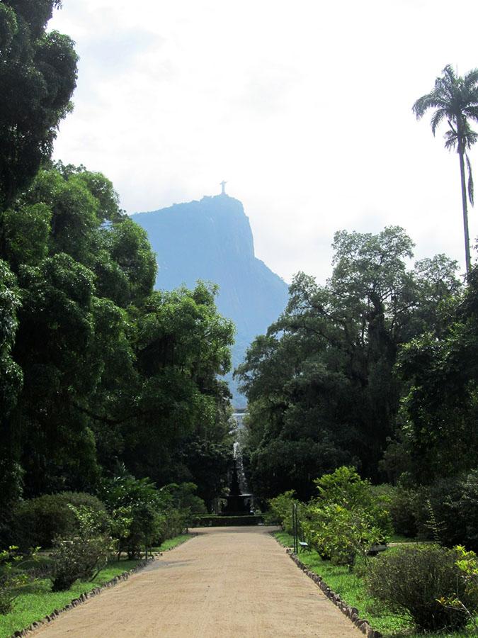 Im botanischen Garten von Rio de Janeiro