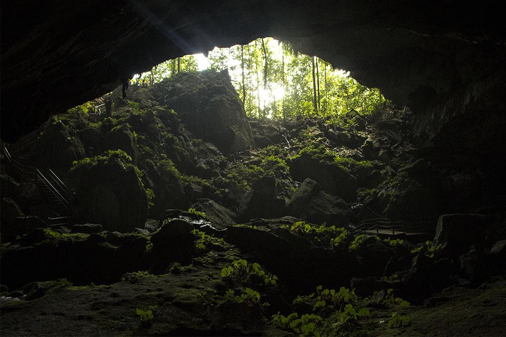 Einige der Schauhöhlen im Mulu Nationalpark sind mit Touren begehbar