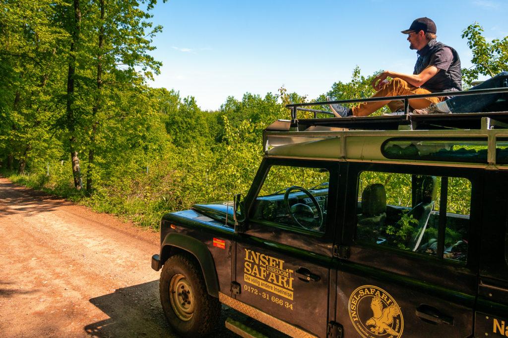 Mit Jeep Usedom auf einer Safari entdecken