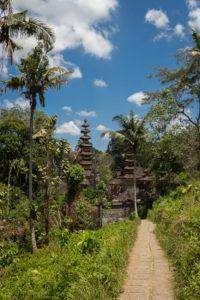 Unsere Wanderung startete beim Pura Gunung Lebah bei Ubud auf Bali