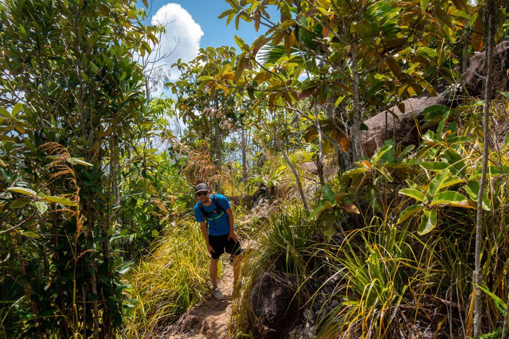 Dschungelpfad auf dem Weg zur Anse Georgette