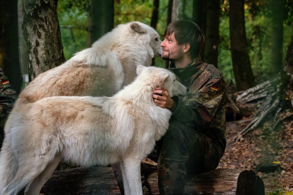 Im Wolfscenter Dörverden kannst du echt Wölfe hautnah begegnen