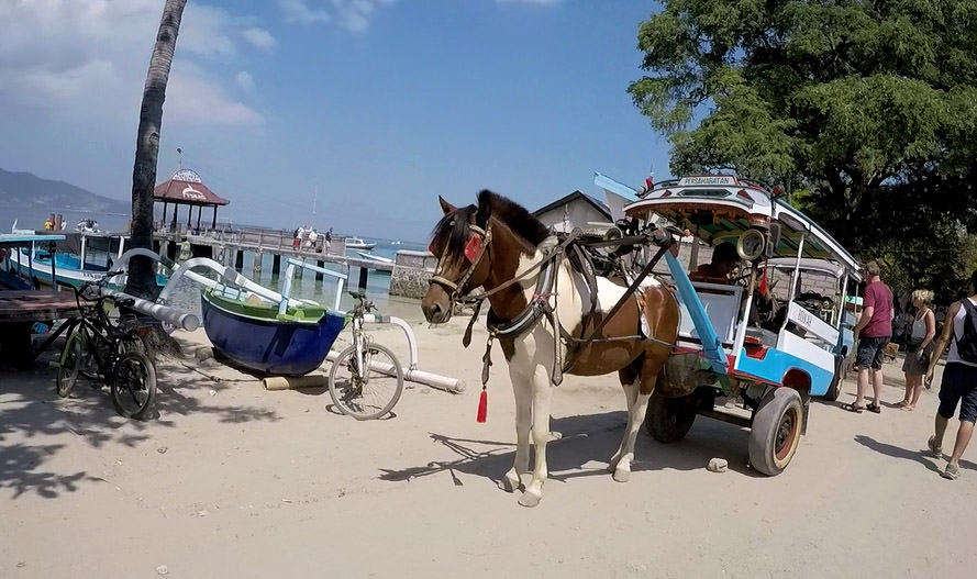 Pferdekutsche statt Taxi