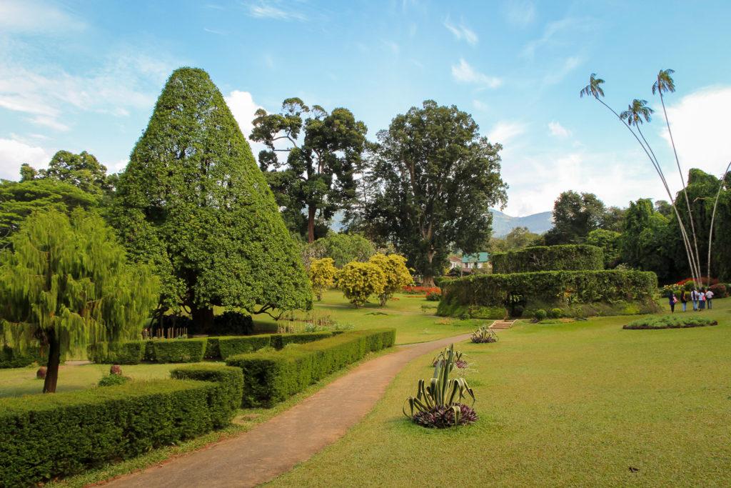 Im Königlichen Botanischen Garten von Kandy