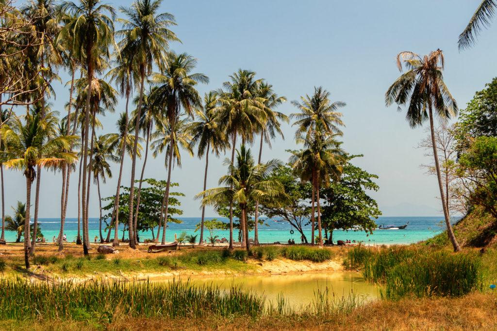 Lagune und Palmen am Loh Mao Dee Beach auf Koh Phi Phi