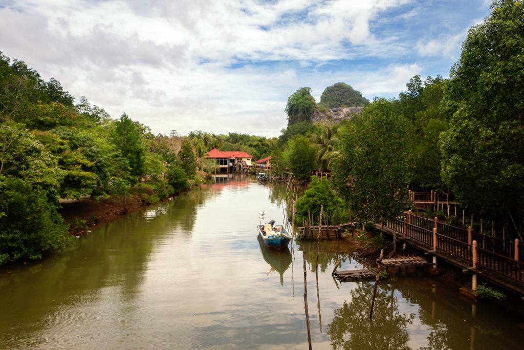 Mangroven-Tour per Boot auf Langkawi